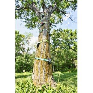 Tree Climber By Slackers