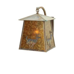 Read Reviews 1-Light Outdoor Wall Lantern By Meyda Tiffany