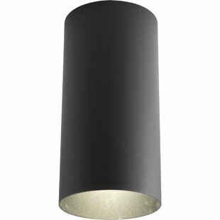 Freund Outdoor Flush Mount