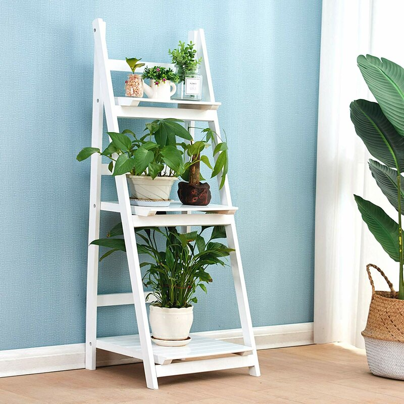 Dashiell Ladder Bookcase
