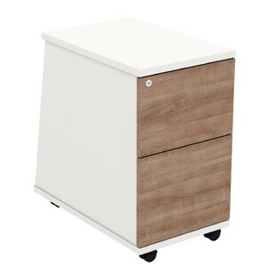 Derryberry 2 Storage Cabinet By Mercury Row