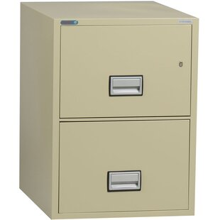 Phoenix Safe International 2-Drawer Vertical Filing Cabinet