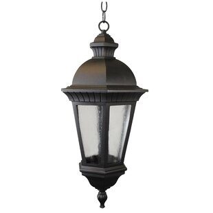 Lenahan 1-Light Outdoor Hanging Lantern by Charlton Home