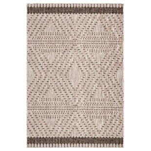 Tirana Borders Gray/Brown Indoor/Outdoor Area Rug