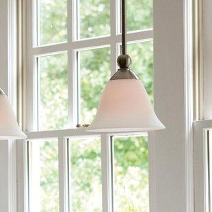 Hinkley Lighting Bolla 1-Light Cone Pendant