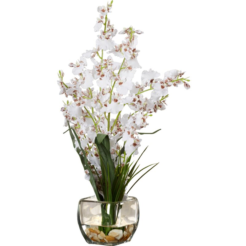 Silk White Orchids Floral Arrangement In Short Oval Vase Reviews