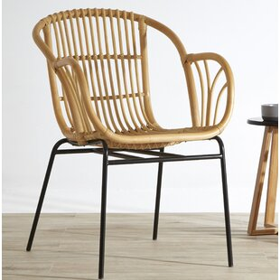 Jann Garden Chair By 17 Stories