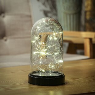 Check Prices ShandiLED 8 Table Lamp By Williston Forge