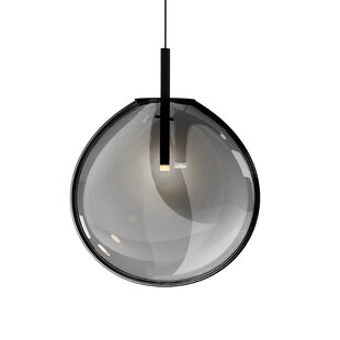 Haleigh 1-Light Pendant by Brayden Studio
