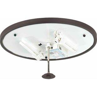 Esprit 2-Light Ceiling Fixture Flush Mount by Volume Lighting