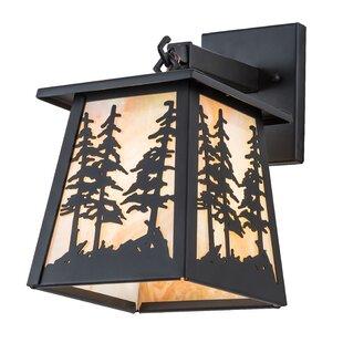 Loon Peak Owego Tall Pine Outdoor Wall Lantern