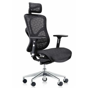 Latitude Run Summer Deluxe Executive Ergonomic Mesh Office Chair