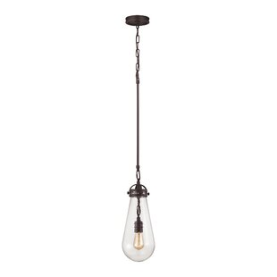 Brayden Studio Manzo 1-Light Novelty Pend..