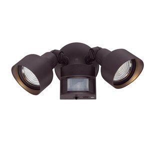 Ebern Designs Mckeehan 2 Head LED Outdoor Spotlight