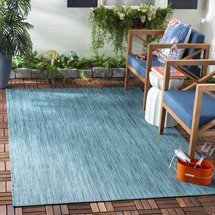 Ephraim Turquoise Indoor/Outdoor Area Rug