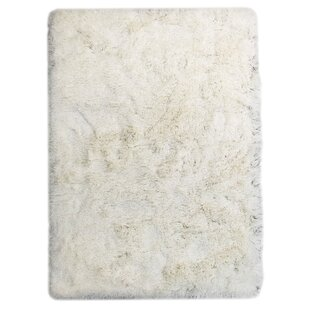 Look for Wolter Solid White Area Rug ByHouse of Hampton
