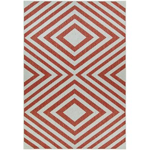 Morrigan Orange/White Indoor/Outdoor Area Rug