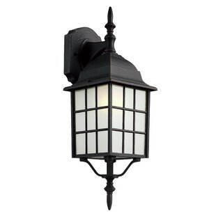 Woodard 1-Light Outdoor Wall Lantern