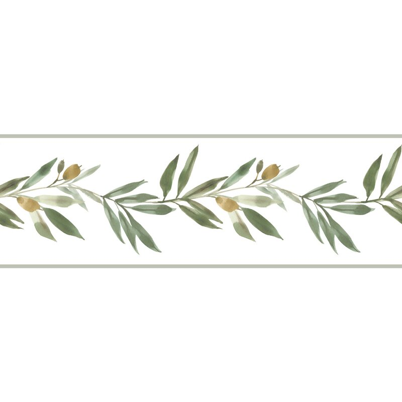 York Wallcoverings Olive Branch 1 25 L X 6 W Wallpaper Border Wayfair