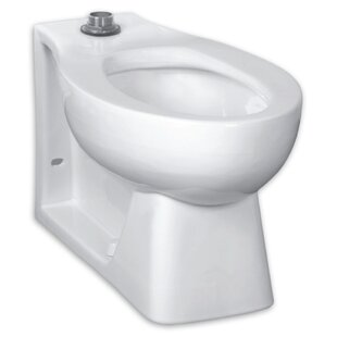 Mansfield Plumbing Products Alto Lined 1 6 Gpf Toilet Tank