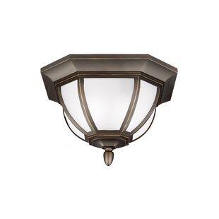 Teri 2-Light Outdoor Flush Mount