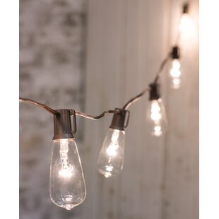 Clear Edison 10 ft. 10-Light Globe String Lights