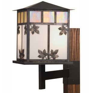 Bargain Seneca Leaf 2-Light Outdoor Wall lantern By Meyda Tiffany