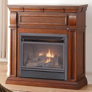 Chestnut Dual Fuel Fireplace by Duluth Forge