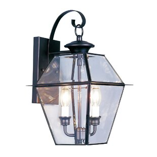 Three Posts Orchard Lane 2-Light Outdoor Wall Lantern