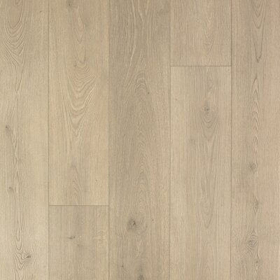 "8"" x 47"" x 12mm Oak Laminate Flooring Mohawk Flooring Color: Sail Cloth"