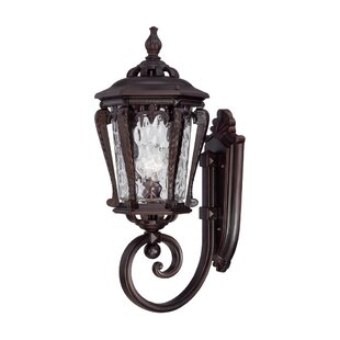 Fleur De Lis Living Berrios 1-Light Outdoor Sconce