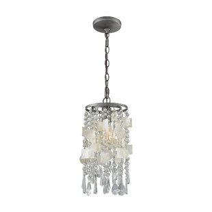 House of Hampton Reid 1-Light Novelty Pendant