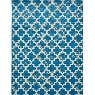 Sarno Turquoise/White Indoor/Outdoor Area Rug