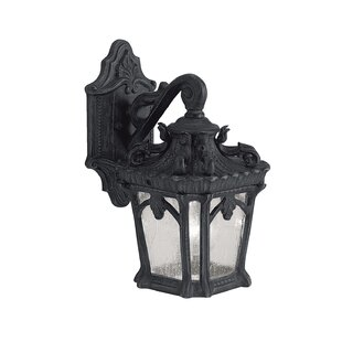 Best Price Guzzi 1-Light Outdoor Wall Lantern By Fleur De Lis Living
