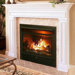 Hardwick Vent Free Recessed Natural Gas/Propane Fireplace Insert by Charlton Home