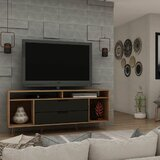 Chehalis TV Stand for TVs up to 60 by Hashtag Home