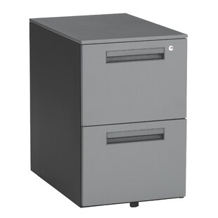 Executive Series 2-Drawer Mobile Vertical Filing Cabinet