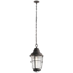Getz 1-Light Outdoor Hanging Lantern