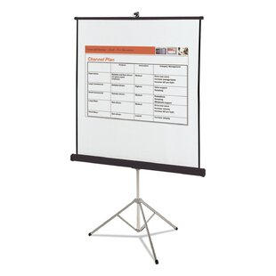 Matte White Portable Projection Screen by Quartet® Best