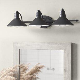 Healy 3-Light Vanity Light by ..