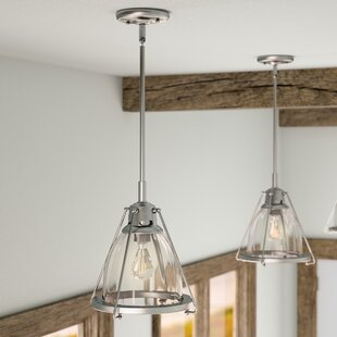 Where buy  Portage 1-Light Bell Pendant By Breakwater Bay