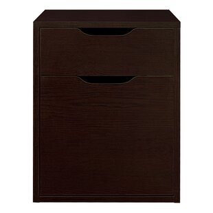 Reviews Freestanding 2-Drawer Vertical Filing Cabinet by Rebrilliant