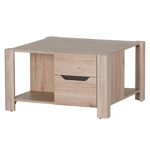 Halethorpe Coffee Table with Storage