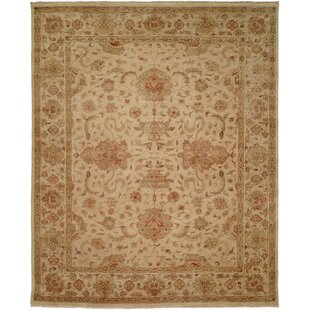 Gurdaspur Hand Knotted Earth Tones Area Rug