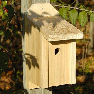 Heartwood Joy Box 13 in x 8 in x 5.5 in Birdhouse