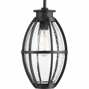 Reviews Janay 1-Light LED Outdoor Hanging Lantern By Longshore Tides