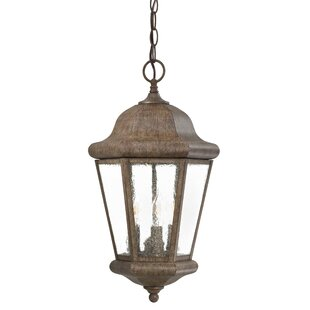 Taylor Court 3-Light Outdoor Hanging Hanging Lantern