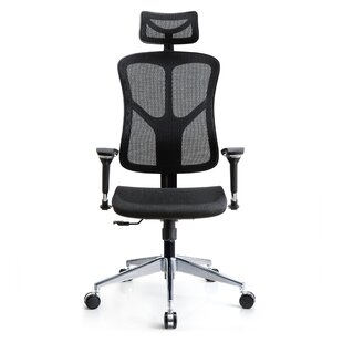Denoila Task Chair by Latitude Run Coupon