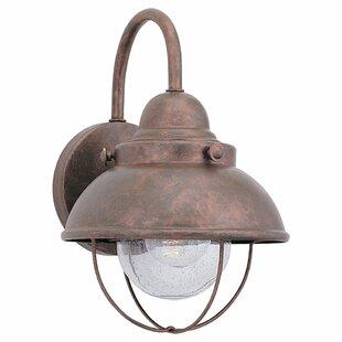 Copper gooseneck outdoor light wayfair workwithnaturefo