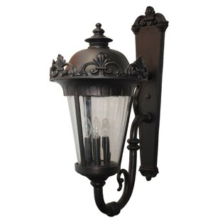 Petrey 4-Light Outdoor Sconce By Alcott Hill